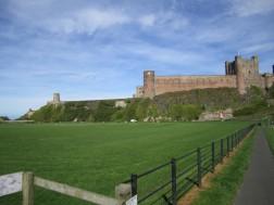 Cricketyard